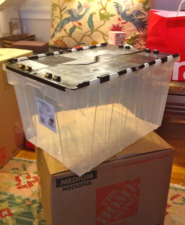 Mudança - Caixa Transparente
